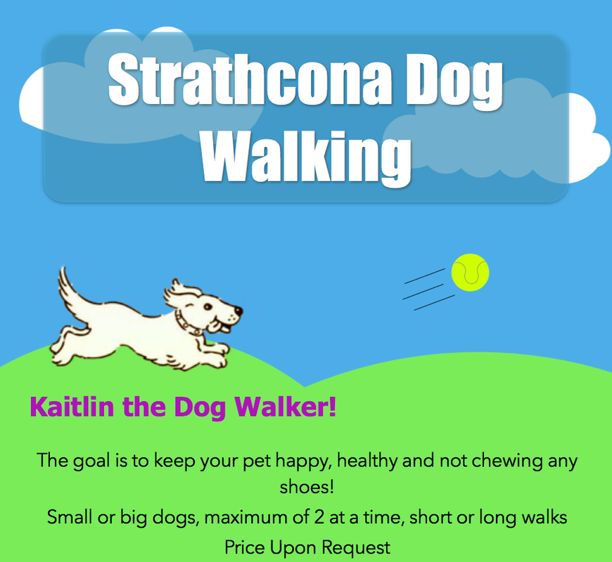 Strathcona Dog Walking Home